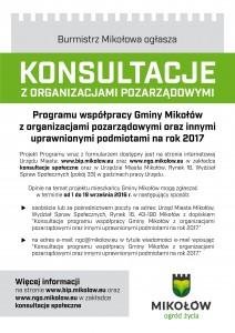 konsultacje społeczne NGO_internet
